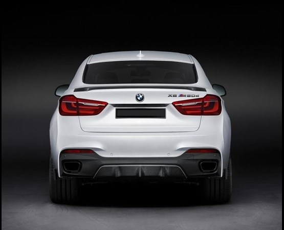 BMW X6 M_back (Small)